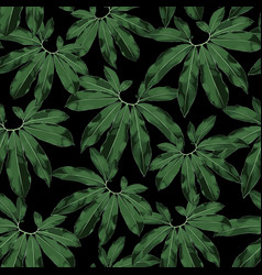 Floral seamless pattern tropical exotic plant lea vector
