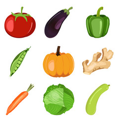 organic fresh set healthy vegetables vector image