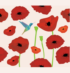 poppies background with hummingbird vector image