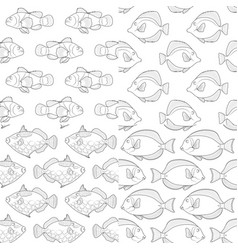 set seamless patterns with tropical fish vector image