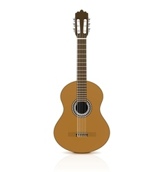 Classical guitar on white background vector image vector image