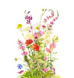 bouquet forest flowering plants wild field vector image