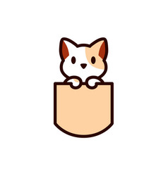 cat in pocket vector image