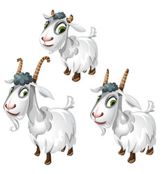 cute goats with green eyes animals vector image