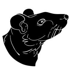 rat avatar vector image