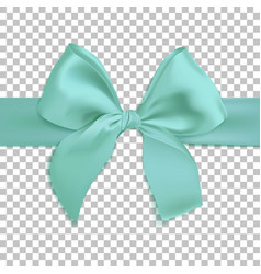 Realistic turquoise bow isolated on transparent vector