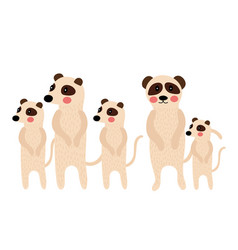 Standing meerkat family group animal cartoon vector