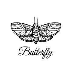 hand drawn butterfly doodle style logo vector image