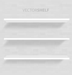 white shelf in gray background vector image