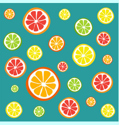 Collection of citrus slices vector