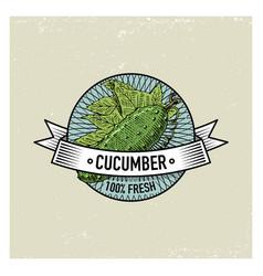 cucumber vintage set of labels emblems or logo vector image vector image