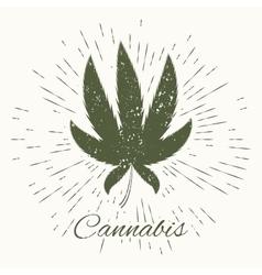 Cannabis and vintage sun burst frame vector