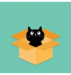 Cat inside opened cardboard package box Flat vector image