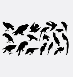 eagle falcon hawk bird animal silhouette vector image