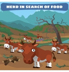 Herd of cows in search of food natural landscape vector image