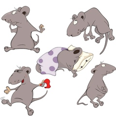 Mice Collection Set vector image