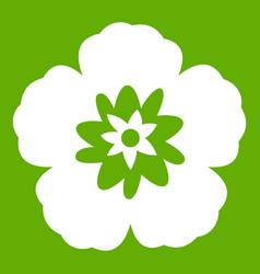 rose of sharon korean flower icon green vector image