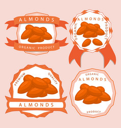 The theme almond vector