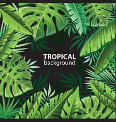 Tropical leaves on black vector