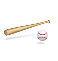 wooden baseball bat and ball realistic vector image
