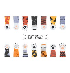 cat paws hand drawn funny puppies and kittens vector image