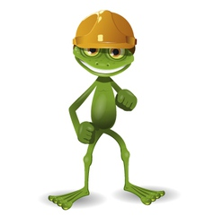 Frog in a helmet vector image vector image