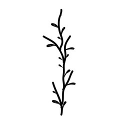rustic branch plant decoration vector image