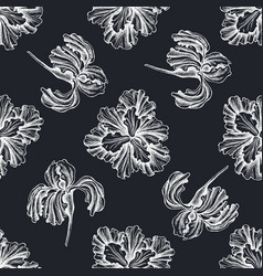 Seamless pattern with hand drawn chalk iris vector