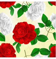 seamless texture rose white and red flower vector image