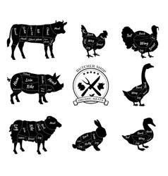 Set Schematic Vew of Animals for Butcher Shop vector image vector image