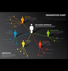company organization hierarchy schema diagram vector image