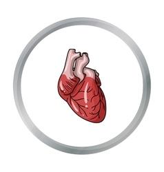 Human heart icon in cartoon style isolated on vector
