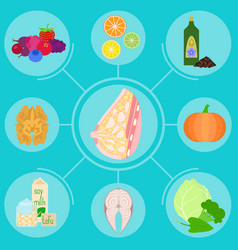 Infographics with foods helpful for female breast vector