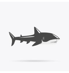 Marine Predator Shark Design Flat vector image