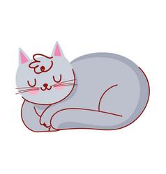 sleeping gray cat domestic pet cartoon isolated vector image