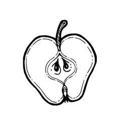 sliced fruit apple isolated coloring book vector image