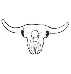 hand drawn skull of a bull vector image