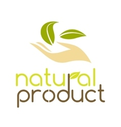 Natural product logo design template vector image vector image