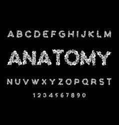 anatomy font skeleton abc letters bones skull and vector image