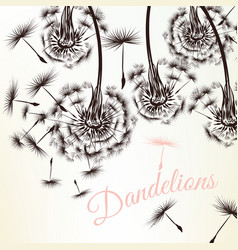 Cute background with white engraved dandelions vector