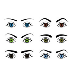 different type woman eyebrows set vector image