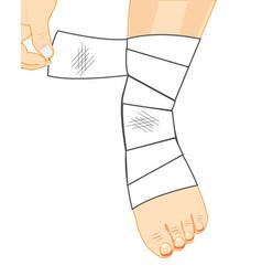 Leg in bandage vector