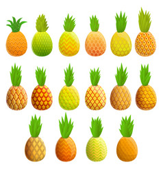 pineapple icons set cartoon style vector image
