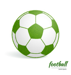 soccer ball green vector image