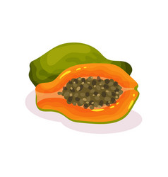 whole and half of ripe papaya tasty exotic fruit vector image