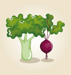 fresh vegetables healthy food vector image vector image