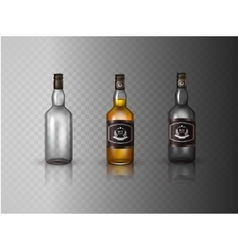 Glass brandy bottle with screw cap isolated on vector image
