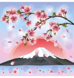 Japanese landscape with mountain and sakura vector image vector image