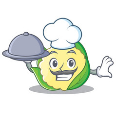Chef with food cauliflower character cartoon style vector