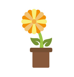 flower in pot icon image vector image